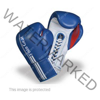 Booster Boxing Glove